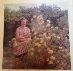 nanny and roses